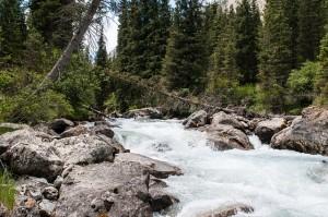 river-811193_640